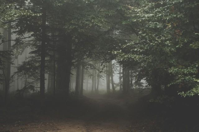 W jaki sposób pokonać lęk przed ciemnością?