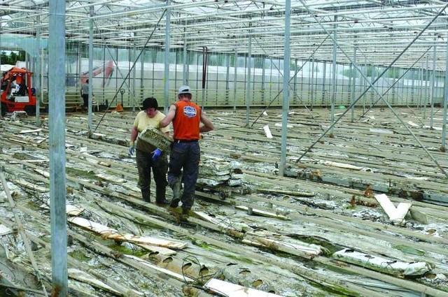 Kilka dni po powodzi rozpoczęło się wielkie sprzątanie po powodzi i szacowanie strat w zalanym gospodarstwie Piotra Zawadzkiego z Maśnika.