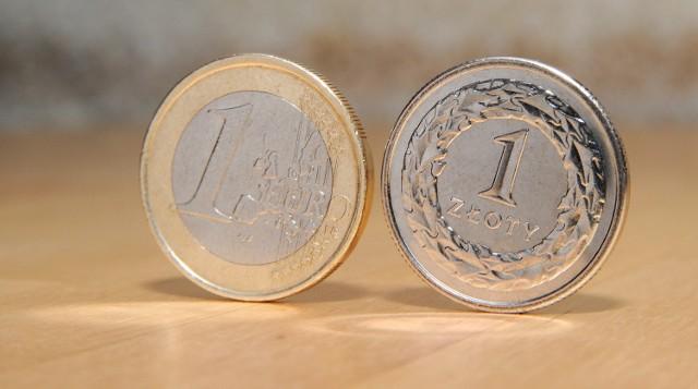 W przypadku kursów, które nie są tranzytem, prowadzone będą dalsze negocjacje co do konieczności płacenia wszystkim kierowcom z firm transportowych przebywającym na terenie Niemiec, stawki 8,5 euro za godzinę