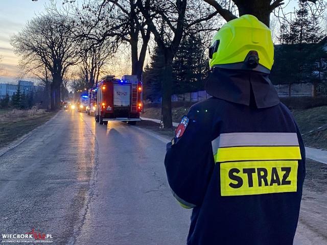 W Więcborku 22-latek pod wpływem alkoholu stracił panowanie nad pojazdem i uderzył w drzewo