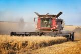 Wielkość produkcji dobra, ale wydajność naszego rolnictwa jest niska. Jak wypadamy w UE?