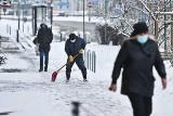 Zima w mieście. Raport z dróg we Wrocławiu i okolicy na żywo [30.01.2021]