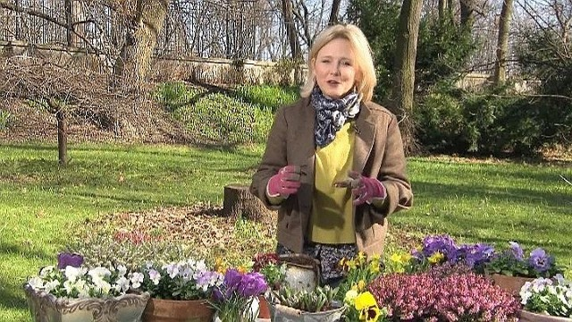 Maja Popielarska poleca jakie kwiaty sadzić na wiosnę (wideo)Maja Popielarska poleca jakie kwiaty sadzić na wiosnę (wideo)