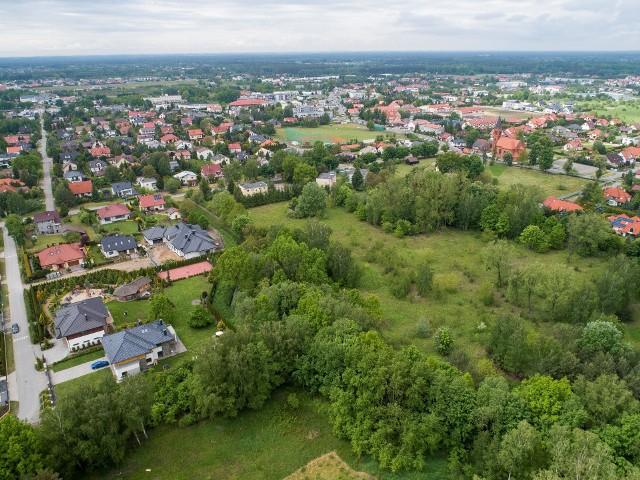 Dawna działka UTP w Osielsku to obecnie tereny zielone porośnięte 25-letnim lasem