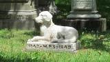 Tak Polacy żegnają swoje psy i koty. Zobacz, jak wyglądają polskie cmentarze dla zwierząt