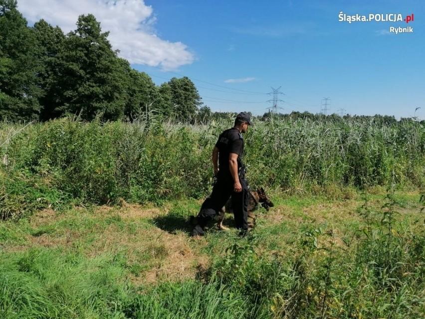 Tragiczny finał poszukiwań mężczyzny w Lyskach....