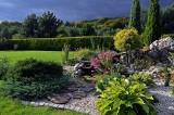 Skalniaki do ogrodu. Które rośliny najlepiej posadzić na skalniaku, aby pięknie rosły? Najlepsze propozycje [GALERIA] 28.04.21