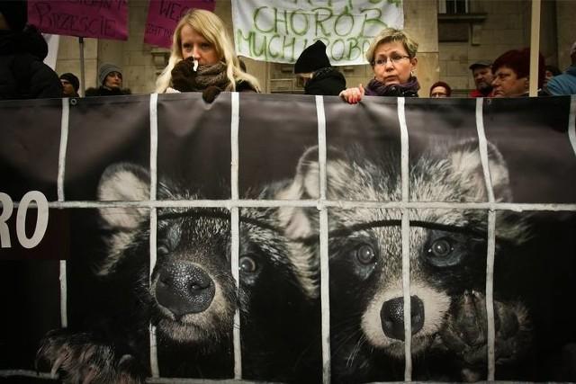 Jeden z protestów przeciwko fermom norek