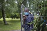 """Litwa i Łotwa bronią się przed """"wojną hybrydową """" Łukaszenki, który wypuszcza migrantów przybywających na Białoruś"""