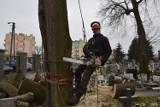 Akcja na cmentarzu przy ul. Wandy w Nowej Soli. Trzeba było usunąć drzewo uszkodzone przez wichurę
