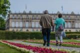 500 plus dla seniorów: Emeryci i renciści otrzymają pieniądze na wypoczynek? Polski Bon Turystyczny miałby do nich trafić jesienią