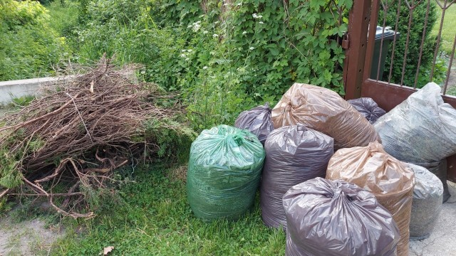 Nasza czytelniczka, działkowiczka z miejscowości Brzeźce przygotowała 15 worków z zielonymi odpadami. Odebrano od niej trzy, 12 zostało na działce.