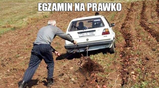 Nowe memy o Podlasiu i Podlasianach. Zobacz śmieszne obrazki, zdjęcia, gify i memy podlaskie przygotowane przez Nienormalny Białystok