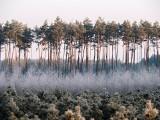 """Wyniki konkursu fotografii """"Powiat Niżański Zimą"""" . Niesamowite efekty prac [ZDJĘCIA]"""