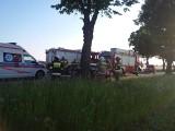 Śmiertelny wypadek na drodze krajowej nr 22 koło Chojnic (zdjęcia)