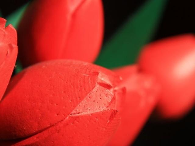 O godzinie 11 miejscy radni SLD będą wręczać kwiaty mieszkankom Białegostoku