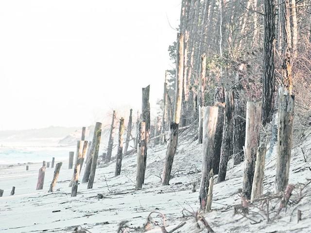 Plaża w Unieściu: sztorm zabrał prawie dwa metry piasku. Widoczna ścianka Larssena latem wystaje na maksymalnie 30 cm