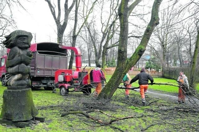 W zgierskim parku kończy się porządkowanie drzewostanu. Niebawem ruszy przebudowa alejek.