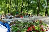 Stokrotki dla białostoczan. Miasto wymienia wiosenną kolekcję kwiatów na letnią. Korzystają na tym mieszkańcy