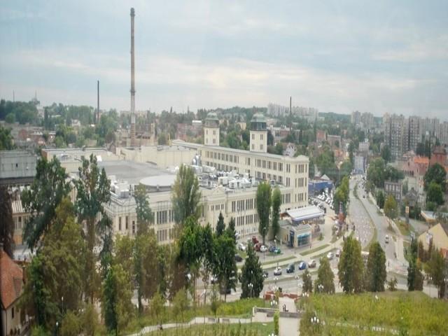 Z Palmiarni rozciąga się piękny widok na dawną Polską Wełnę i okolice ul. Sienkiewicza