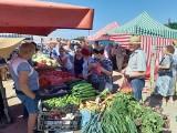 Tłumy na targowisku w Golubiu-Dobrzyniu - zobacz zdjęcia jak wyglądają zakupy w piątek 11 czerwca