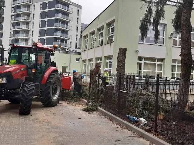 Drzewa przy szkole wycięto w sobotę. Mieszkańcy domagają się likwidacji drogi i zaprzestania dewastacji zieleni.