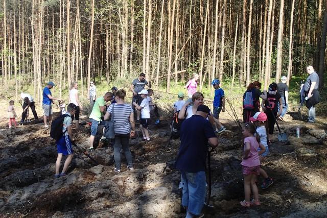 W  pierwszym dniu akademii uczestnicy m.in. sadzili las.