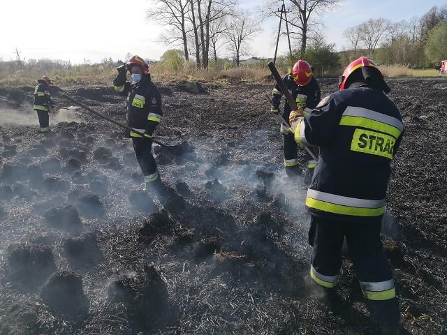 Pożar traw w Hebdowie