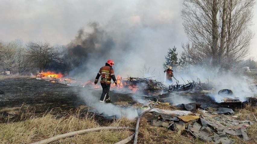 Ogień trawił lasy w pobliżu strefy wykluczenia od 4 kwietnia