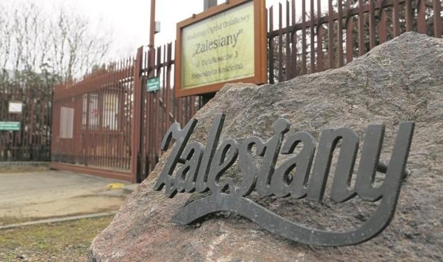 """W ogrodzie """"Zalesiany"""" wydzielonych jest 138 działek. W 1979 roku, gdy teren ten został przekazany działkowcom przez gminę była tu dzika żwirownia."""