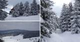 Zima jest jeszcze w Gorcach. Warto ją zobaczyć i poczuć [ZDJĘCIA]