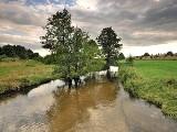 Loryniec - malowniczo usytuowana wieś na terenie Wdzydzkiego Parku Krajobrazowego [ZDJĘCIA]