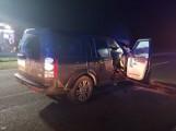Zderzenie z łosiem na autostradzie A1! Wypadek na A1: łoś zderzył się z samochodem