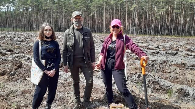 Posadzili ponad 2 tysiące drzewek w Lublińcu. Udana akcja zostanie na pewno powtórzona.Zobacz kolejne zdjęcia. Przesuwaj zdjęcia w prawo - naciśnij strzałkę lub przycisk NASTĘPNE