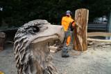 Poznań Wood Festival 2021: Najlepsi rzeźbiarze w drewnie tworzą cuda w parku Wilsona. Zobacz zdjęcia!