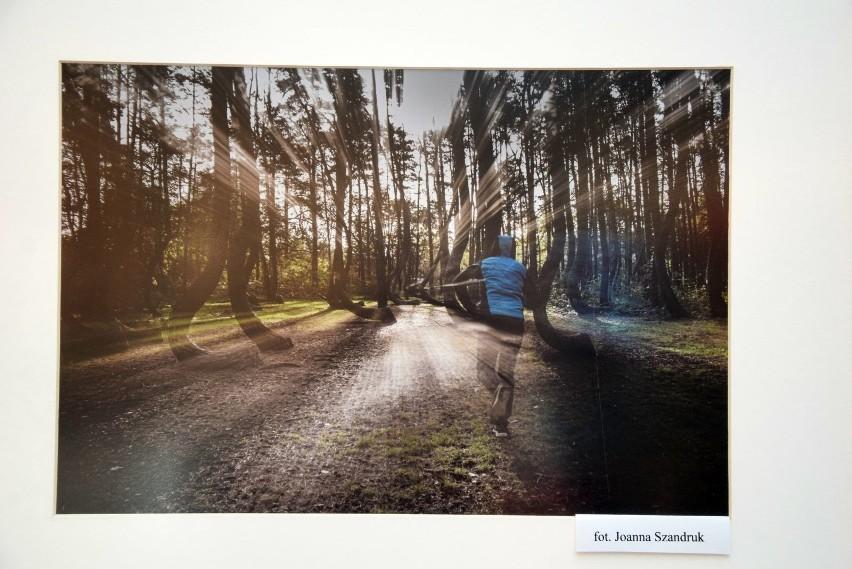 Wystawa prac Zielonogórskiego Towarzystwa Fotograficznego w...