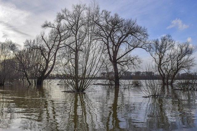 Państwowe Gospodarstwo Wodne Wody Polskie wraz z ekspertami w tym zakresie cyklicznie przygotowują plany zarządzania ryzykiem powodziowym dla obszarów dorzeczy i regionów wodnych.