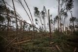 Usuwanie skutków nawałnicy na Pomorzu. Zniszczone lasy, domy bez prądu, nieprzejezdne drogi [raport]