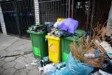Statystyczny Polak wytwarza rocznie 315 kg odpadów komunalnych. To daje nam 14. miejsce w UE [GALERIA]