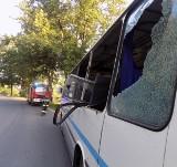Jeleń wbiegł na jezdnię. Uderzył w szkolny autobus. Jedna osoba trafiła do szpitala