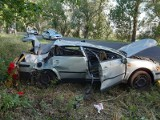 Wypadek pod Kostrzynem nad Odrą. Dachowało auto osobowe. Trzy osoby ranne