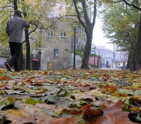 Do piątku będzie uprzątnięty park Wiosny Ludów, kolejne w następnych tygodniach.