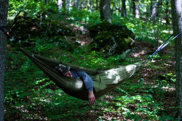 Zanocuj w lesie to ogólnopolski program Lasów Państwowych