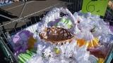 Na ryneczku w Gorzowie handel kwitnie. Mieszkańcy robią przedświąteczne zakupy!