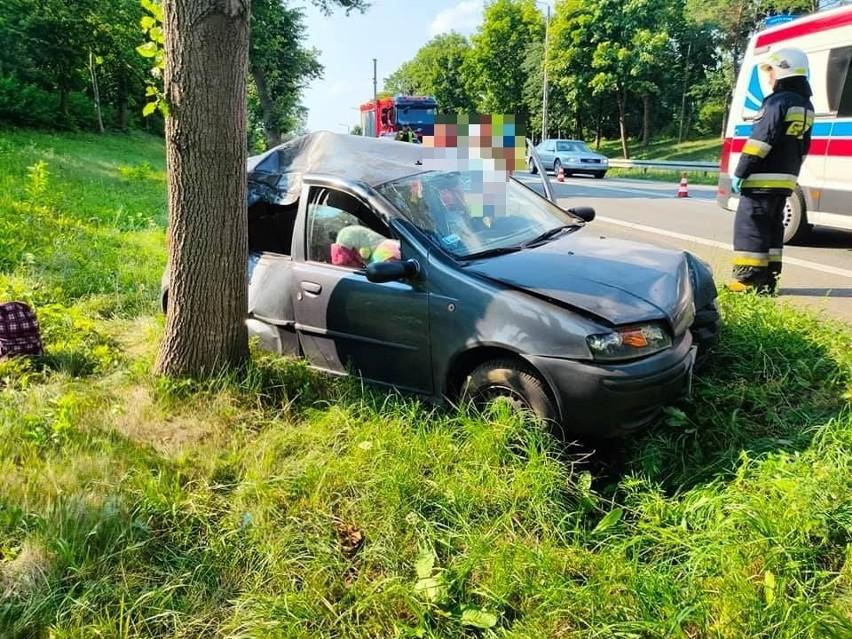 Poświętne. Wypadek na DK8. Fiat uderzył w drzewo