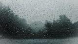 Mysłowice: Burza nad miastem. Przewrócone drzewa i podtopienia posesji