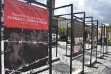 Rocznica wyzwolenia hitlerowskiego obozu w Potulicach w cieniu pandemii [zdjęcia]