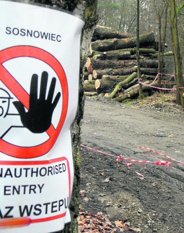 Sterty drewna zalegają w parku im. Jacka Kuronia w Kazimierzu. - To nie służy wypoczynkowi - argumentują mieszkańcy dzielnicy