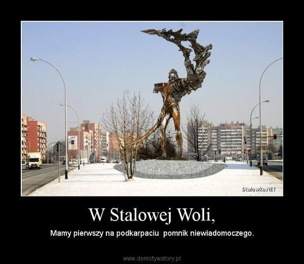 Memy o Stalowej Woli,  Tarnobrzegu i regionie. Jak widzą nas...