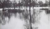 Wielka powódź w 1979 roku w Stargardzie. Woda wlała się do miasta. Archiwalne ZDJĘCIA